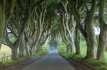 Game of Thrones Tours Northern Ireland